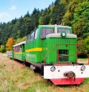In the Carpathian region, shooting of a film about the life of narrow-gauge railroads began in Ukraine and Switzerland.